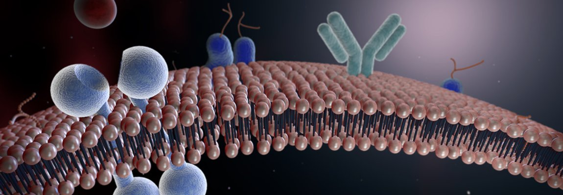 fusion based cell manipulation